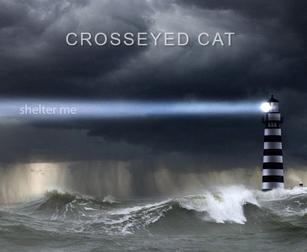 Crosseyed Cat - Shelter Me