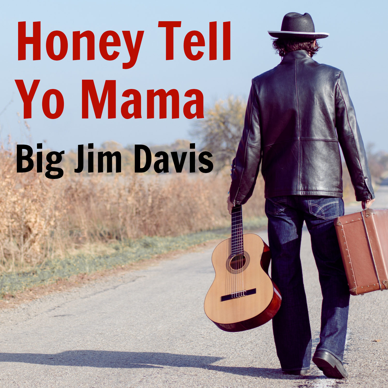 Big Jim Davis - Honey Tell Yo Mama (single)